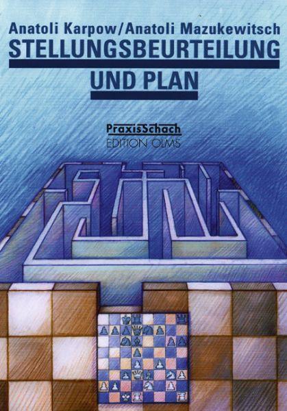 Schachbuch Stellungsbeurteilung und Plan