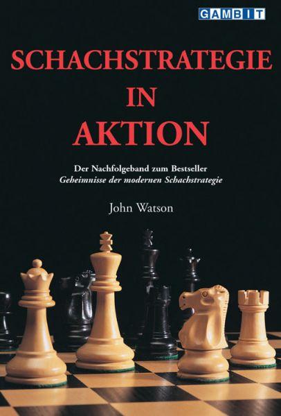 Schachbuch Schachstrategie in Aktion