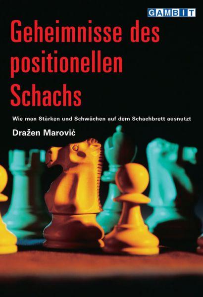 Schachbuch Geheimnisse des positionellen Schach