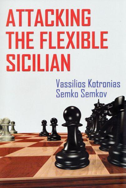 Schachbuch Attacking the Flexible Sicilian