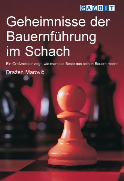 Schachbuch Geheimnisse der Bauernführung im Schach